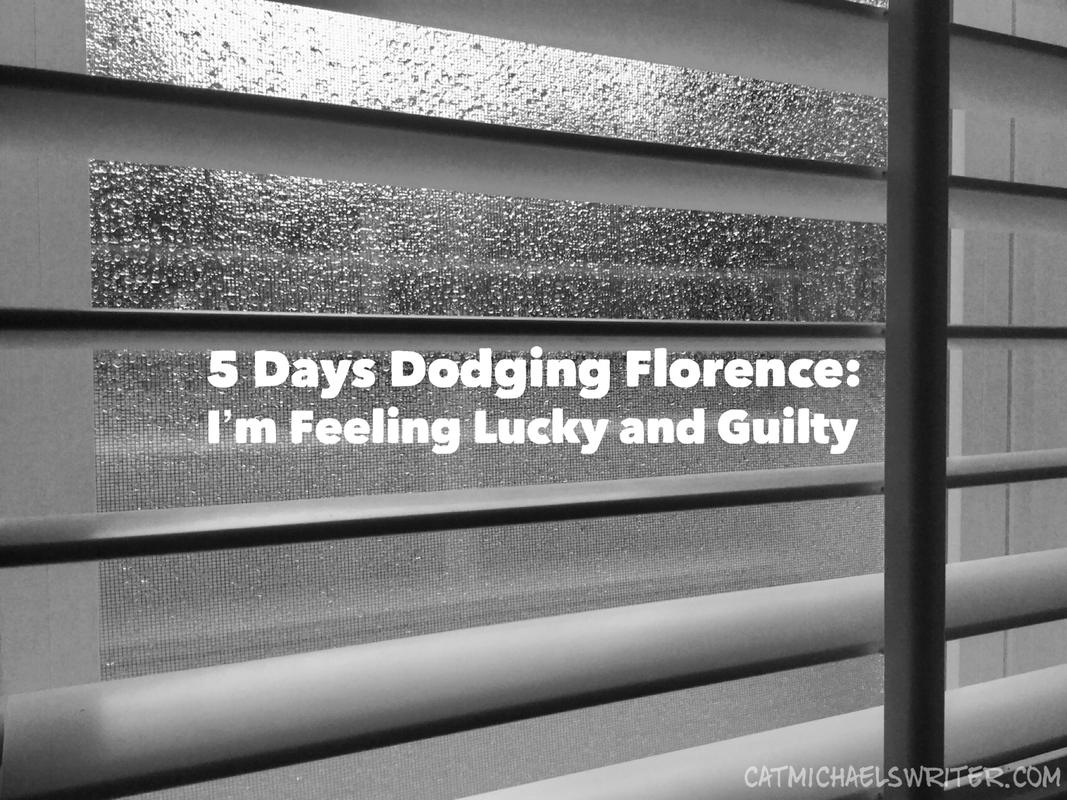 Five Days Dodging Florence: I'm Feeling Lucky and Guilty - catmichaelswiter.com