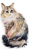 Watercolor drawing of Mowgli the cat ~ www.catmichaelswriter.com