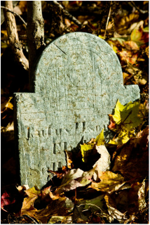 Picture: Tiny, old-timey tombstone at the base of an old tree that is covered with autumn leaves. Cat Michaels: