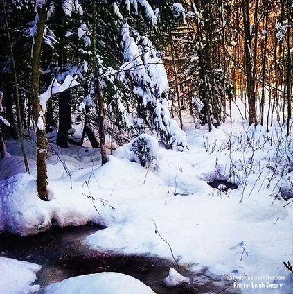 photograph by Leigh Emery: still,snow-covered woods and frozen pond exemplify the peace, beauty of the season www.catmichaelswriter.com