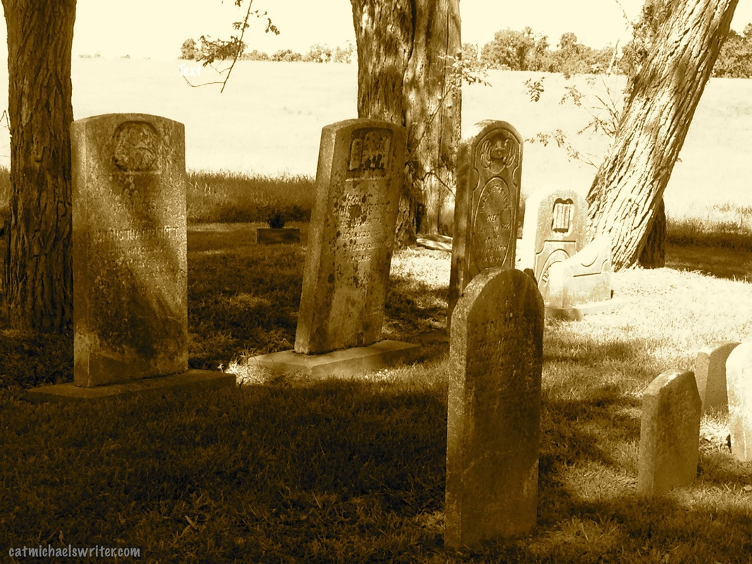 Picture: Sepia-toned graveyard: Cat Michaels: House Ghost Keeps Us On Our Toes -- A True Story?